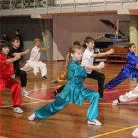 Чемпионат России по спортивному ушу